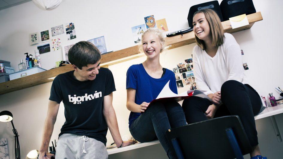 Eleverne laver lektier og projekter sammen